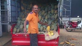 HIKKADUWA, SRI LANKA - FEBRUAR 2014: Bemannen Sie das Schneiden einer Ananas an Markt Hikkaduwa Sonntag, bekannt für seine breite stock video