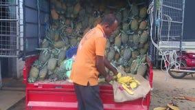 HIKKADUWA, SRI LANKA - FEBRUAR 2014: Bemannen Sie das Schneiden einer Ananas an Markt Hikkaduwa Sonntag, bekannt für seine breite stock footage