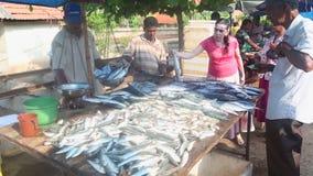 HIKKADUWA, SRI LANKA - FEBRUAR 2014: Einheimische, die Fische an Hikkaduwa-Markt verkaufen und kaufen Markt Hikkaduwa Sonntag bek stock video footage