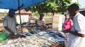 HIKKADUWA, SRI LANKA - FEBRUAR 2014: Einheimische, die Fische an Markt Hikkaduwa Sonntag, bekannt für seine breite Palette von fr stock video