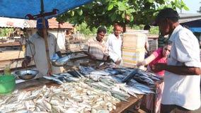 HIKKADUWA, SRI LANKA - FEBRUAR 2014: Einheimische, die Fische an Markt Hikkaduwa Sonntag, bekannt für seine breite Palette von fr stock footage