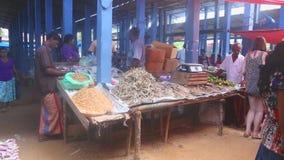 HIKKADUWA, SRI LANKA - FEBRUAR 2014: Einheimische, die ihr Erzeugnis an Markt Hikkaduwa Sonntag, bekannt für seine breite Palette stock video footage