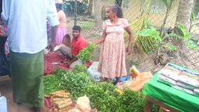 HIKKADUWA, SRI LANKA - FEBRUAR 2014: Lokale Frauenverkauf und -leute, die vorbei an Markt Hikkaduwa Sonntag, bekannt für sein bre stock footage