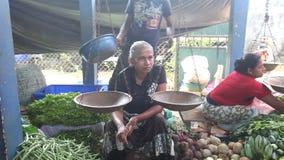HIKKADUWA, SRI LANKA - FEBRUAR 2014: Lokaler Frauenverkauf und -leute, die vorbei an Hikkaduwa-Markt überschreiten Markt Hikkaduw stock footage