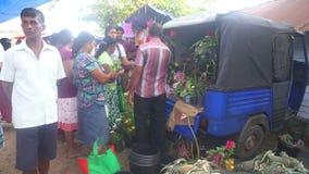 HIKKADUWA, SRI LANKA - FEBRUAR 2014: Lokaler Mann, der die Anlagen und Frauen kaufen an Hikkaduwa-Markt verkauft Markt Hikkaduwa  stock video