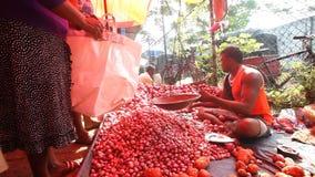 HIKKADUWA, SRI LANKA - FEBRUAR 2014: Lokaler Mann, der Tomaten an Hikkaduwa-Markt verkaufend sitzt Markt Hikkaduwa Sonntag bekann stock video footage
