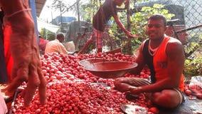 HIKKADUWA, SRI LANKA - FEBRUAR 2014: Lokaler Mann, der Tomaten an Hikkaduwa-Markt verkaufend sitzt Markt Hikkaduwa Sonntag bekann stock video