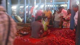 HIKKADUWA, SRI LANKA - FEBRUAR 2014: Lokaler Mannverkauf und -leute, die an Markt Hikkaduwa Sonntag, bekannt für seine breite Pal stock video