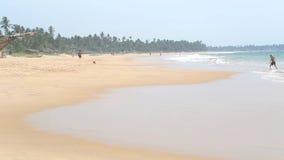 HIKKADUWA, SRI LANKA - FEBRUARI 2014: Mens die uit overzees op zandig strand komen stock footage