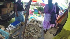 HIKKADUWA, SRI LANKA - MÄRZ 2014: Ansicht des lokalen Verkäufers Trockenfisch an Sonntags-Markt verkaufend stock footage