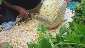 HIKKADUWA, SRI LANKA - MÄRZ 2014: Frauenausschnitt Durianfrucht mit großem Messer an Sonntags-Markt stock video footage