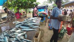 HIKKADUWA, SRI LANKA - MÄRZ 2014: Frische Fische auf dem Tisch am Markt in Sri Lanka, Kunden, die vorbei überschreiten stock video