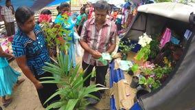 HIKKADUWA, SRI LANKA - MÄRZ 2014: Kaufende Blumen der Frau und Plaudern mit dem Verkäufer am Sonntags-Markt in Sri Lanka stock video