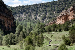 Hikking Stock Photo
