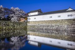 Hikone Castle Arkivbild
