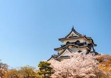 Hikone castle with blue sky, Shiga, Japan 1 Royalty Free Stock Image