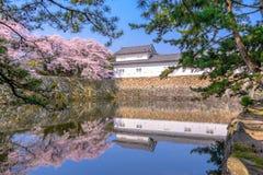 Hikone Castle in de Lente royalty-vrije stock fotografie