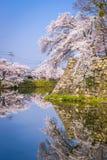 Hikone Castle Moat Royalty Free Stock Image