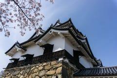 Hikone Castle qui branches d'arbre de fleurs de cerisier Image stock