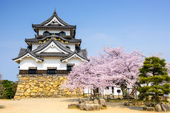 Hikone Castle in the Spring Stock Photo