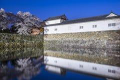 Hikone kasztel Fotografia Stock