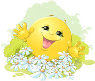 Hilarious bun on a background of flowers. Hilarious bun is happy on the background of flowers Royalty Free Stock Photo