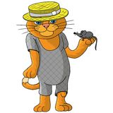 Hilarious cat in a straw hat. Stock Images