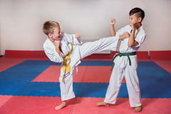 ?hildren demonstrate martial arts working together Royalty Free Stock Photo