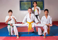 ?hildren demonstrate martial arts working together Stock Photography