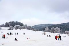 Hildren está patinando en un trineo largo funcionado con en invierno en nieve imagen de archivo libre de regalías
