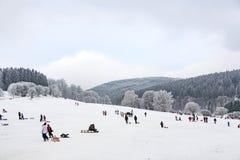 Hildren está patinando en un trineo largo funcionado con en invierno en nieve foto de archivo