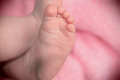 Сhildren's feet. Mom's favorite sweet little feet Stock Photography