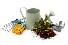 Hilfsmittel für die Gartenarbeit Lizenzfreie Stockfotos