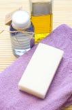 Hilfsmittel für Karosserie interessieren sich im Badekurortsalon Lizenzfreie Stockfotos