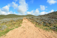 Hill και δρόμος Στοκ φωτογραφία με δικαίωμα ελεύθερης χρήσης