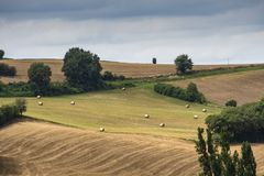 Hill με τους οργωμένους τομείς στα ατλαντικά Πυρηναία aquitaine Γαλλία στοκ εικόνα με δικαίωμα ελεύθερης χρήσης