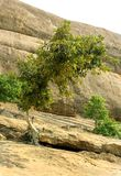 Hill με το τοπίο ουρανού του sittanavasal ναού σπηλιών σύνθετου στοκ εικόνες
