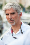 Hill του Damon, F1 παγκόσμιος πρωτοπόρος Στοκ εικόνες με δικαίωμα ελεύθερης χρήσης