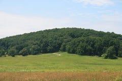 Hill των δέντρων Στοκ φωτογραφία με δικαίωμα ελεύθερης χρήσης