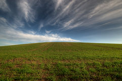 Hill. Agricultural field with blue sky and clouds Stock Image