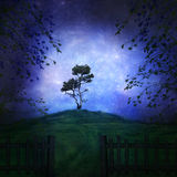 The hill. View of a hill with a tree on top on a starry night vector illustration