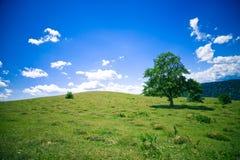 hill Zdjęcie Royalty Free