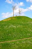 Hill. Lonley tree on the top of a hill Royalty Free Stock Photography