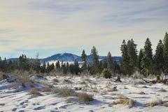 Hill Arber, Cloudes and trees, winter landscape in Šumava in Železná Ruda, czech republic Royalty Free Stock Photos