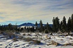 Hill Arber, Cloudes and trees, winter landscape in Šumava in Železná Ruda, czech republic Stock Image