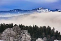 Hill, Arber (Germany), Cloudes and trees, winter landscape in Šumava in Železná Ruda, czech republic Royalty Free Stock Photo