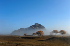 Hill and autumn trees in a foggy morning Royalty Free Stock Images