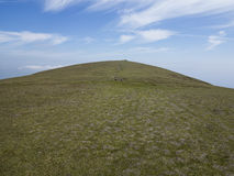 The hill. Hill close  to the summit of slieve commedagh on the mourne mountains Ireland Royalty Free Stock Photography