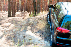 Hill in coniferous forest with a big black car Stock Photo