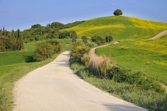 Hill countryside in Tuscany Stock Images